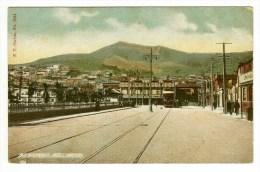 New Zealand, North Island, Wellington, Courtenay Place, Dominion Book Arcade, Tram, Mount Victoria, Printed Postcard - New Zealand