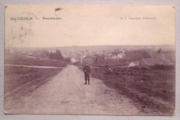 SAINTE CECILE 1905 Panorama Animee Non Divisée - Ed. Duparque, Florenville - Florenville