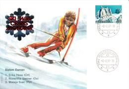 Ski, Walliser,Switzerland, Mountain, Hess, Steiner, Svet - Skisport