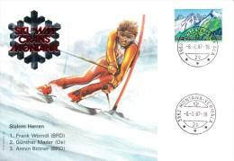 Ski, Walliser,Switzerland, Mountain, Wörndl, Mader, Bittner - Skisport