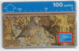 GIBRALTAR REF MVcards GIB-19  100U  Oiseau PARBARY  PATRIDGE MINT - Gibraltar