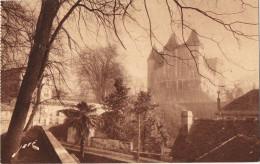11838. Postal PAU (Pyrenées Atlantiques)  Chateau Henri IV Vu Basse Plante - Pau