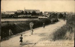 CERFS-VOLANTS - 49 SAINT-GEORGES-SUR-LOIRE - - Saint Georges Sur Loire
