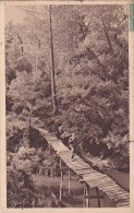 CPA 40 @ La Douce France - Les Landes De Gascogne- Pont Primitif Sur Le Courant D´Huchet - LEON , Moliets , Saint Girons - Altri Comuni