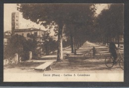 8918-LUCCA-CORTINA S.COLOMBANO-ANIMATA-1926-FP - Lucca