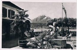 Lucerne   Chalets - LU Lucerne