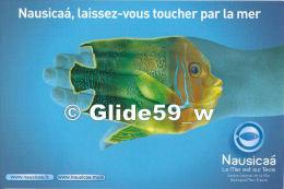 BOULOGNE SUR MER - Nausicaà 2010 - Exposition Temporaire Rencontres à Madagascar - Nausicaà, Laissez-vous Toucher... 1 - Boulogne Sur Mer