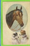 CHIENS  & CHEVAUX - SUPERBE ILLUSTRATION SIGNÉE: C. REICHERT -  ENV. 1910-T.S.N. Serie 1871 - Andere Illustrators
