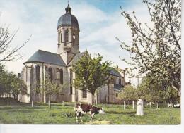 JUAYE-MONDAYE  (14-Calvados), Abbaye, Ordre De Prémontré, Le Chevet, Moine, Vache, Ed. Le Goubey - Other Municipalities