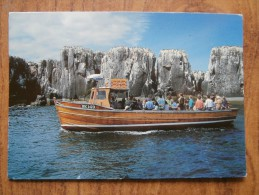 39274 POSTCARD: NORTHUMBERLAND: Billy Shiel's Farne Islands Boat Trips On M.F.V. GLAD TIDINGS IV. - Ships