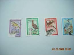 F 20     SAHARA     4 OISEAUX - Oiseaux