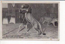 """Spectacle Forain Ou  Cirque  """" Martha La Corse """"  Aux Prise Avec Son Lion Prince - Zirkus"""