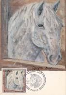 CARTE POSTALE PREMIER JOUR / LE PERCHERON (CHEVAL) - 7 JANVIER 1978 - Cartes-Maximum