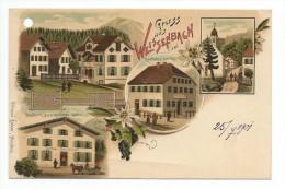 GRUSS AUS WEISSENBACH TIROL-25/07-1901- - Sin Clasificación