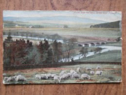 """39605 POSTCARD: AGRICULTURE: """"Hills And Valleys, Dales And Fields."""" - Farms"""