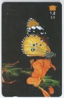 Telefoonkaart.- Oman. Plain Tiger - Phonecard - Telecard - Used Card - Vlinder. - Oman
