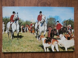 39611 POSTCARD: AGRICULTURE: HORSES: An English Hunting Scene. - Farms