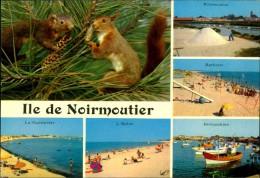N°193 DID CARTE GRAND FORMAT MULTIVUES ILE DE NOIRMOUTIER - Noirmoutier