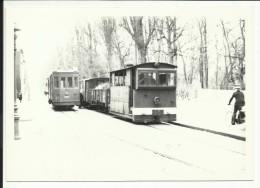 PHOTO , BELGIQUE , BRUGES  , Train Type 8 N 1046 + Fourgon Tracteur électrique  , 14,8 X 10,4 - Trains