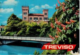 TREVISO   CASTELLO  ROMANO    (VIAGGIATA) - Treviso