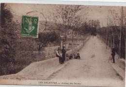 CPA Carqueiranne - Les Salettes - L'Avenue - Carqueiranne