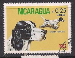 Nicaragua. Dog. - Nicaragua