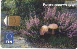 FINLAND - Muchrooms, FIN telecard 6 euro, tirage 75000, 08/03, used
