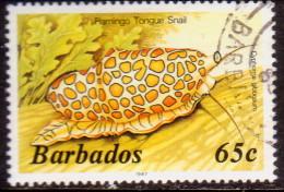 BARBADOS 1987 SG #804B 65c VF Used Imprint 1987 Wmk Mult. Crown Script CA Diagonal Marine Life - Barbades (1966-...)