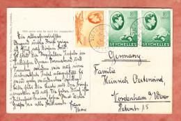 Round Island Seychellen, MiF Schildkroete U.a., Victoria Nach Nordenham 1938 (22711) - Seychellen