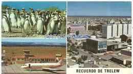 3257 BOLIVIA LA PAZ STREET CALLE AYACUCHO POSTAL POSTCARD - Bolivie