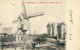 Scherpenheuvel -Topkaart - De Molen - Kasteel Michiels -Hondekaar  -190? ( Verso Zien ) - Scherpenheuvel-Zichem