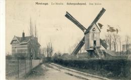 Scherpenheuvel -Topkaart - De Molen  -190? ( Verso Zien ) - Scherpenheuvel-Zichem