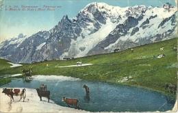 Courmayeur(Aosta)-Paturage Sur Le Mont De La Saxe E Mont Blanc-1928 - Aosta