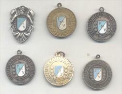 VOLEY-BALL VOLEIBOL  VOLLEYBALL VOLEYBALL LOTE DE 6 MEDALLAS ARGENTINA CIRCA 1970 RARES - Tokens & Medals
