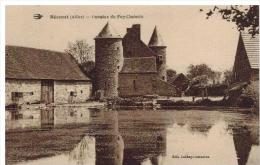 Bezenet: Domaine Du Puy Chatonin - Zonder Classificatie
