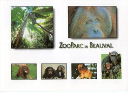 Postcard - Beauval Zoo Park. A - Monkeys