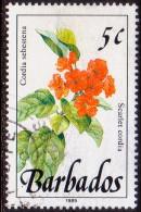 BARBADOS 1989 SG #891 5c VF Used Wild Plants Imprint 1989 - Barbados (1966-...)