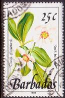 BARBADOS 1989 SG #894 25c VF Used Wild Plants Imprint 1989 - Barbades (1966-...)