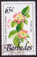 BARBADOS 1989 SG #899 65c VF Used Wild Plants Imprint 1989 - Barbados (1966-...)