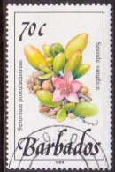 BARBADOS 1989 SG #900 70c VF Used Wild Plants Imprint 1989 - Barbados (1966-...)