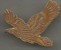 Aigle - Animaux