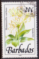 BARBADOS 1990 SG #924 20c VF Used Wild Plants Imprint 1990 - Barbados (1966-...)