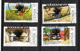 Venda ( Sud Africa )   -   1982.  Coltivazione E Raccolto Del Sisal. Cultivation And Harvest Of Sisal. Complete Set - Agriculture