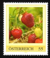 ÖSTERREICH 2009 ** Erdbeeren, Strawberries - PM Personalized Stamp MNH - Ernährung