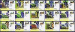 """2013 ITALIA REPUBBLICA """"VINI ITALIANI DOCG"""" CARTOLINE MAXIMUM - Cartes-Maximum (CM)"""