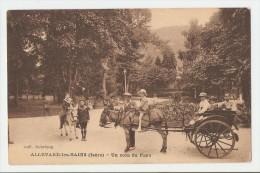 38 Dép.- Allevard Les Bains (Isère) - Un Coin Du Parc. Coll. Debrieux. Carte Postale Ayant  Voyagé En 1934, Dos Séparé, - Allevard