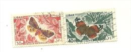 Papillons          (pag15) - Liban