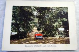 MONTICCHIO ATELLA UN VIALE NELLA FORESTA AUTO -CASCINA AI LAGHI