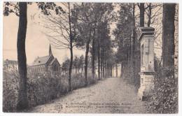 Scherpenheuvel - Montaigu  Cpa  Kapel En Rozenkransweg - Scherpenheuvel-Zichem