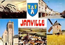 Belle   Cpsm       - Janville -  Divers Vues         F1232 - France